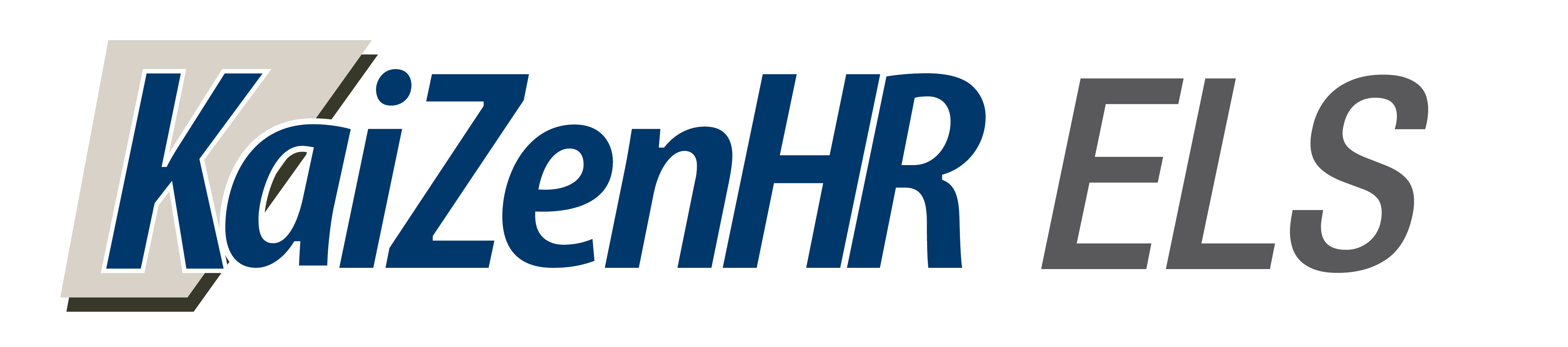 Malaysia Human Resource Management System HR Software Solution